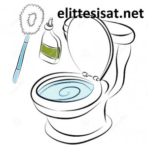 http://www.dreamstime.com/stock-photos-toilet-bowl-cleaning-tools-image23855663
